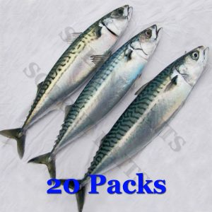 Solent Baits Mackerel 20 packs